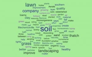 landscaping company southern md better lawn